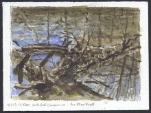 """Log in River at Sandy Hook, Connecticut (for Allison Wyatt)"""
